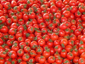 transformados de tomate Conesa
